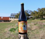 Jester King Buford's Wares bottle