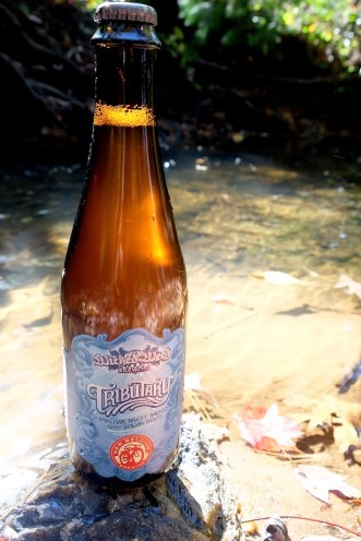 Wicked Weed/New Belgium Tributary releases November 15th