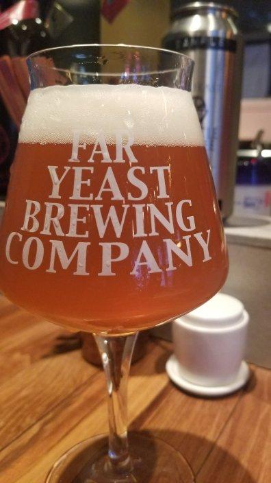 Far Yeast Tokyo Craft Beer & Bao Beer 2