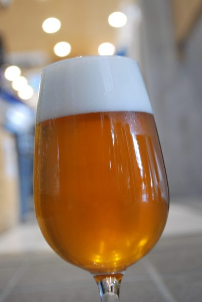 TDM1874 Beer 2
