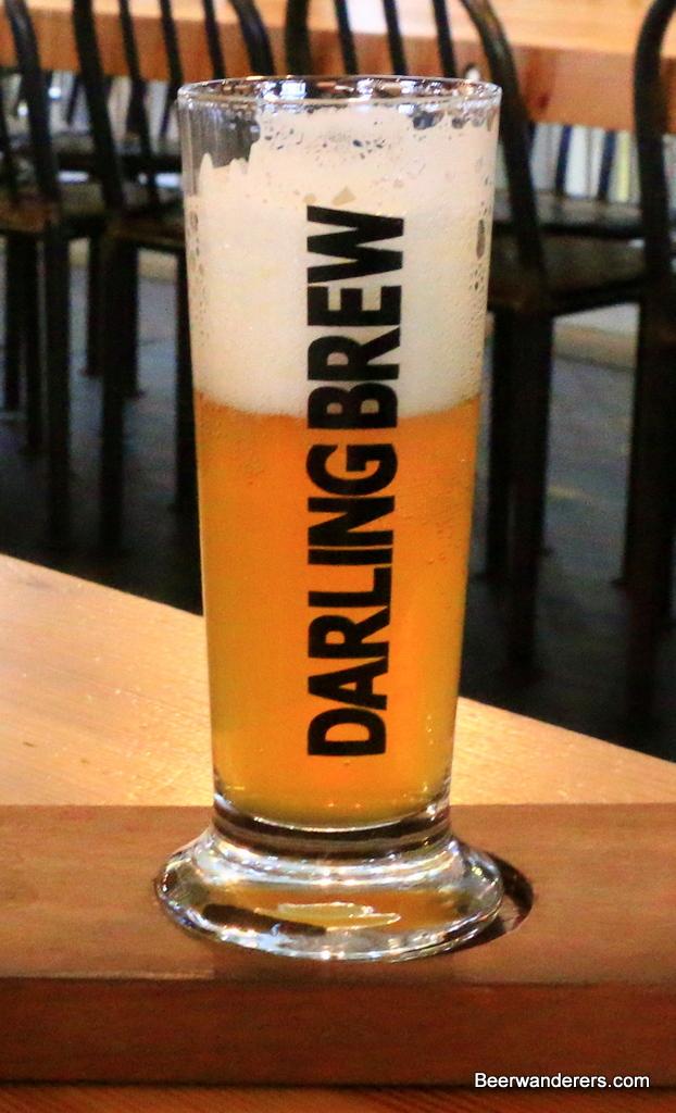 darling brew pilsner
