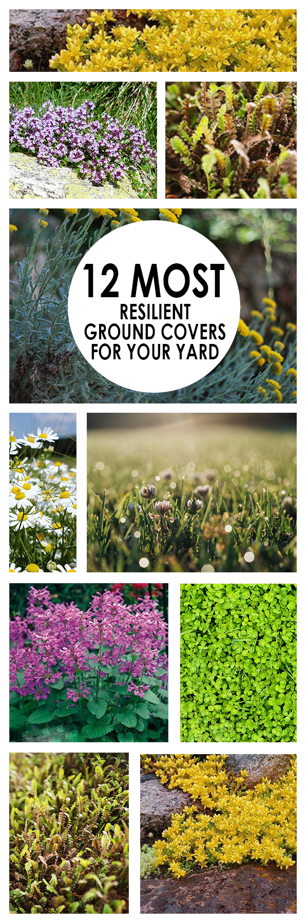resilient ground covers