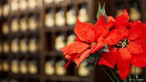 TWG Tea 5th Anniversary - Joy Of Christmas Festive Feast www.beesjourney.com | Bee's Journey - Outdoor Travel Inspiration, Luxury Hotels & Lifestyle