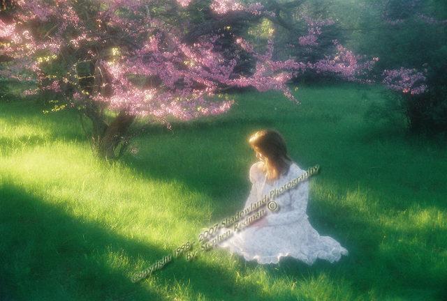 shadowland photography - image