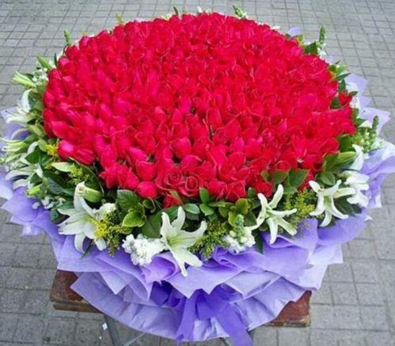2月14日情人節送不同數量的玫瑰花代表不同意思!千萬別送錯啊!