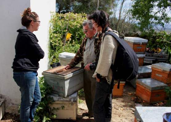 Our visit to local beekeeper Manuel Vigilia, Bee Time Spring 2016