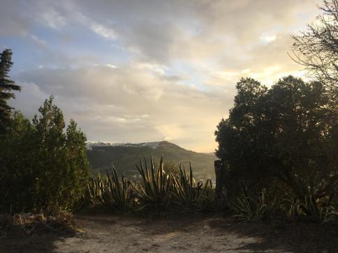 El abejaruco - We visit local beekeeper Manolo Vigilia