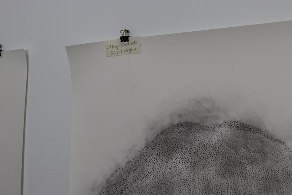 Sophie Twiss, documenting numbers of migrating birds, detail