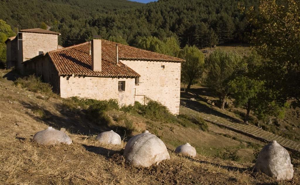 Madre Sal, Villoslada de Cameros, La Rioja, 2008