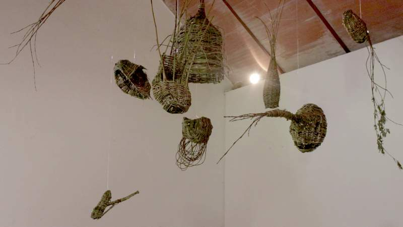 Exposición El Enjambre