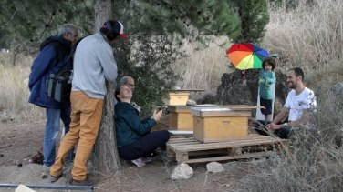 ... Visiting their local beehives