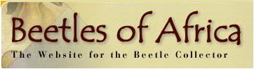 Beetles of Africa