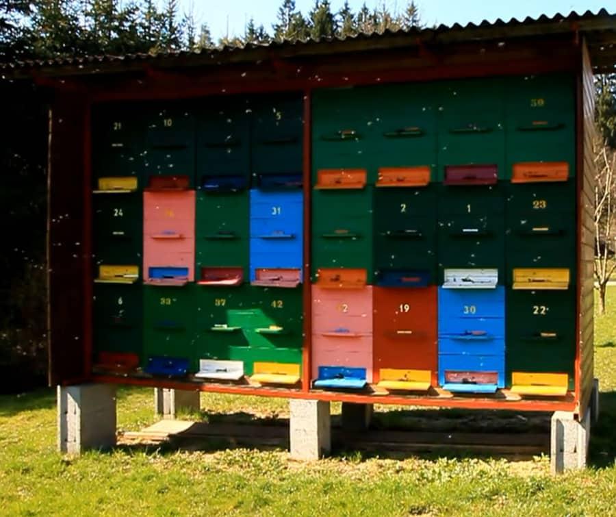 top-bar-hives