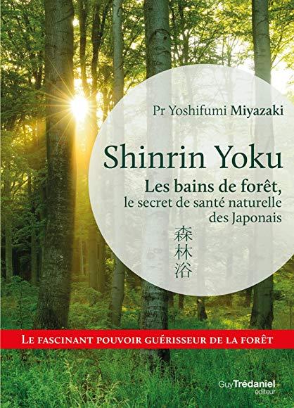Shinrin yoku les bains de forêt, le secret de santé naturelle des japonais