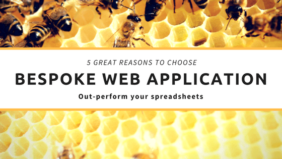 5 Great Reasons to Choose a Bespoke Web Application