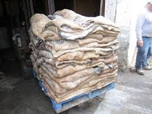 wet-salted-cow-hide-and-dry-donkey-jpg_220x220