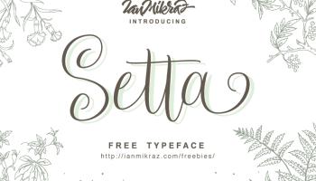modern script fonts