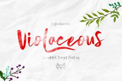 Violaceous - Modern Script Font