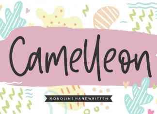 Camelleon Monoline Handwritten Font