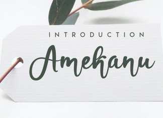 Amekanu Script Font