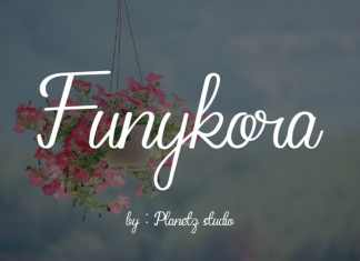 Funykora Handwritten Font