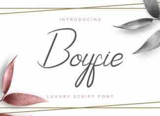 Boyfie Luxury Script Font