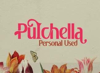 Pulchella Sans Serif Font