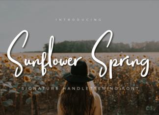 Sunflower Spring Script Font