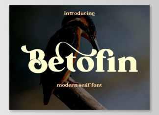 Betofin Serif Font