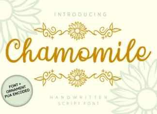 Chamomile Handwritten Font