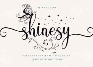 Shinesy Calligraphy Font