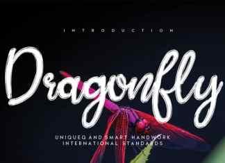 Dragonfly Brush Font