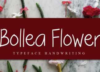 Bollea Flower Handwritten Font