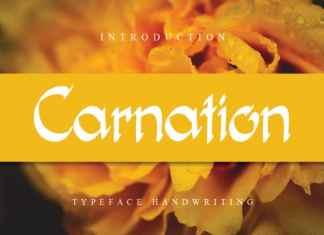 Carnation Flower Font