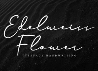 Edelweiss Flower Handwritten Font