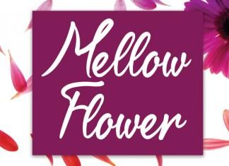 Mellow Flower Script Font