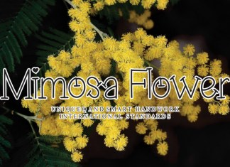 Mimosa Flower Display Font