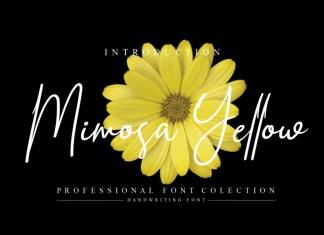 Mimosa Yellow Script Font