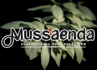 Mussaenda Script Font
