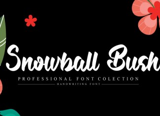 Snowball Bush Script Font