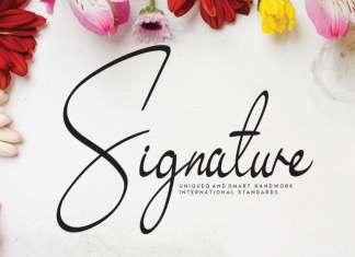 Signature - Exquisite Handwritten Font