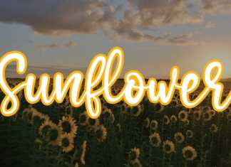Sunflower Handwritten Font