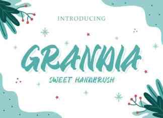 GRANDIA HANDBRUSH FONT