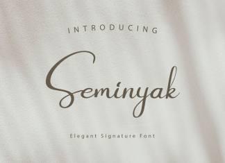 Seminyak Script Font