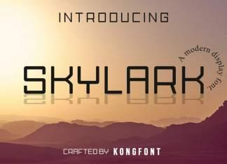 Skylark Display Font