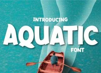 Aquatic Display Font