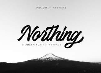 Northing Script Font