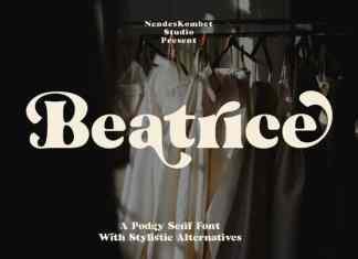 Beatrice Serif Font