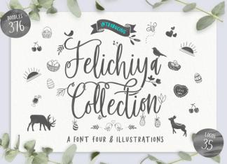Felichiya Collection Script Font