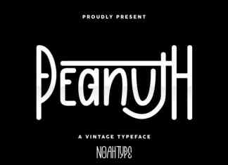 Peanuth Handwritten Font